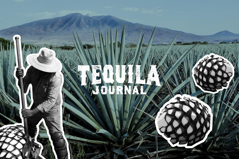 TEQUILA JOURNAL チャンネル