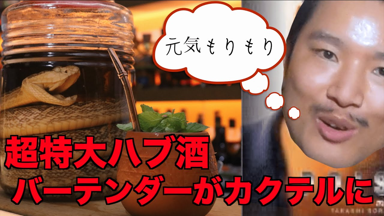 [動画]【衝撃‼︎超特大ハブ酒!!】プロのバーテンダーが美味しく仕上げてみた🍸【snake julep】